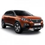 Peugeot 3008 17-