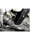 Защита двигателя, КПП, радиатора для авто Volkswagen Caddy WeBasto 2004-2010 V-все D (только электроусилитель) ( TM Kolchuga ) Стандарт